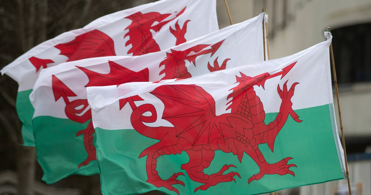 It has been described as a crash course in football club ownership and. What is St David's Day and why do we celebrate it? Here