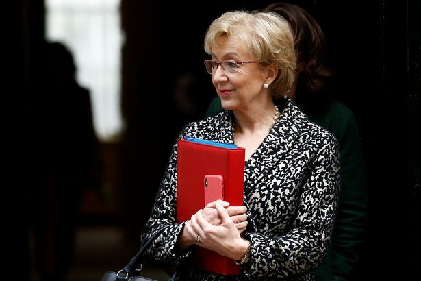 Andrea Leadsom voiced fears that the Cabinet would not deliver Brexit (Image: REUTERS)