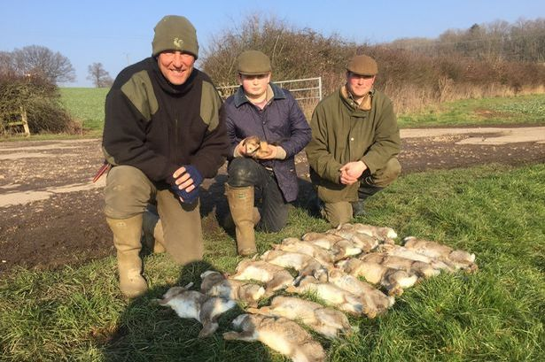 Vinnie Jones targeted by animal rights campaigners over love of 'cruel' hunting
