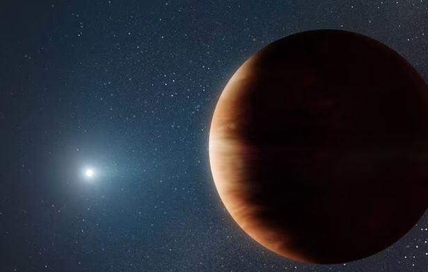 A huge Jupiter-sized planet is discovered orbiting a dead star