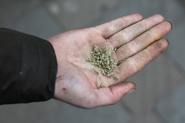 A man holds a pile of the drug Spice in his hand