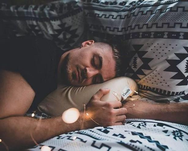 coodle pillow amazon online