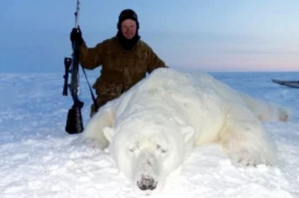 Sick trophy hunters pose beside polar bear kills as thousands slaughtered -  World News - Mirror Online