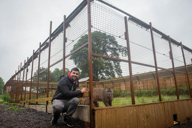 Reece with the big cat enclosure that houses her Canadian Puma
