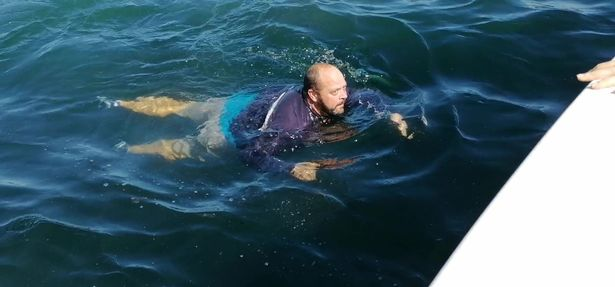 The whales and dolphin had moved on allowing him to swim to safety