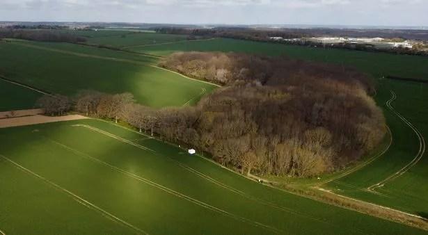 Akholt Wood