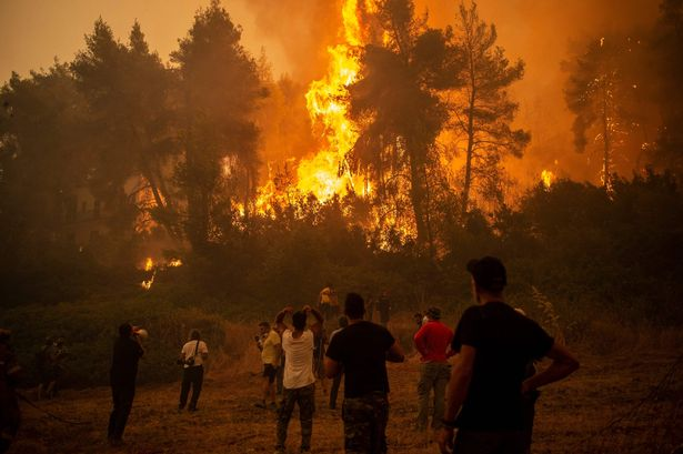 A local uses a megaphone as others observe a large forest fire