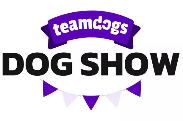 0 DogShow logo white background