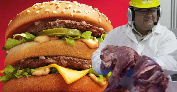 What's REALLY in a Big Mac? McDonald's opens its doors to ...