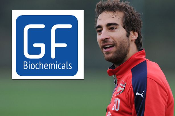Image result for mathieu flamini company
