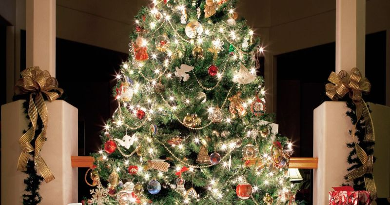 When Should I Put My Christmas Tree And Decorations Up Here S Where To Real Artificial Trees For 2017 Mirror Online