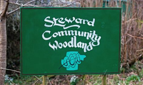 The Steward Woodland Community - made up of 23 people, including nine children and teenagers - live in hand-built huts on a beauty spot in rural Dartmoor with no connection to mains, electricity or water