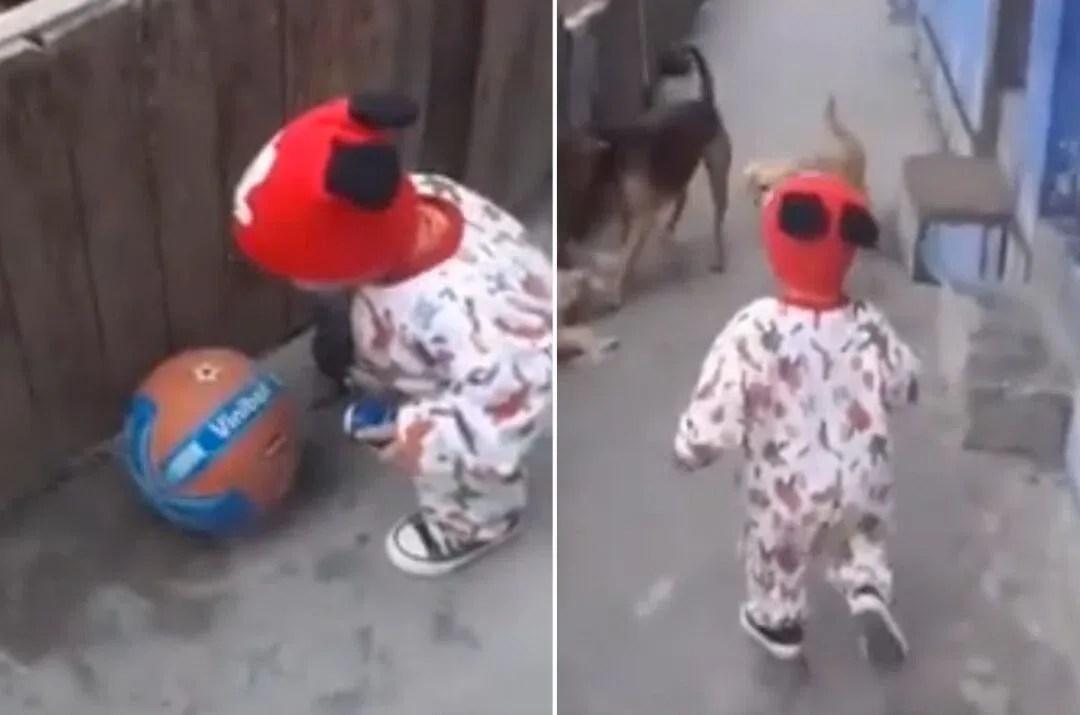 ¿De dónde salió la pelota en el video del niño con perros?