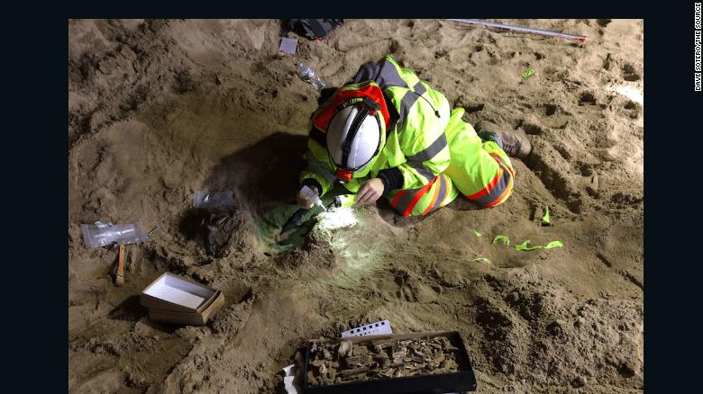 Paleontologist Dr. Ashley Leger preparing a tusk for removal