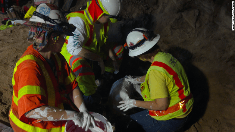 Placing found fossils in plaster so they can be safely removed from the construction site