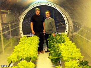 Plants such as lettuce, peppers and tomatoes will be on the menu at Moon Base One.