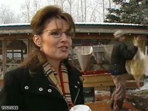 The infamous turkey in the background of Gov. Sarah Palin's interview sold for $225.