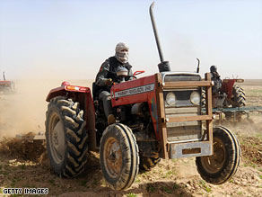Afghan police destroy poppy fields in Helmand province.