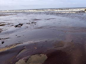 Many say lawmakers are missing an opportunity to reform the energy sector, in light of the recent Gulf oil spill.