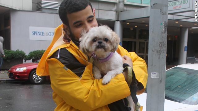 Pets survive Hurricane Sandy