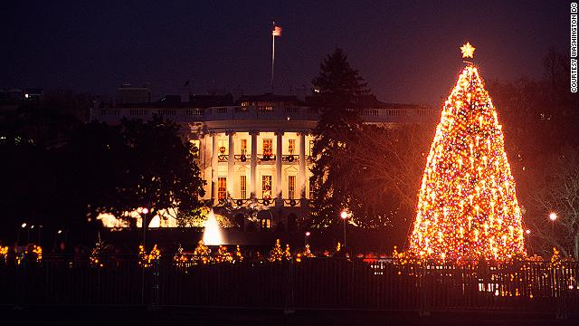 Befitting the White House, the Commander in Chief's Christmas tree is impressive. Nearby, Union Station has a beautiful 30-foot tree, a gift from the Embassy of Norway.