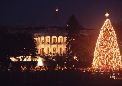 Árbol de Navidad Nacional (Washington, DC)