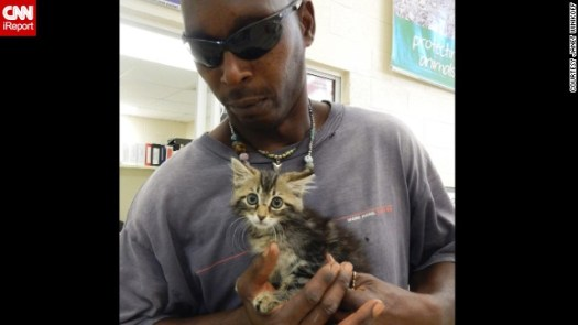 The Human and the Feline In an Amazing Cat Rescue