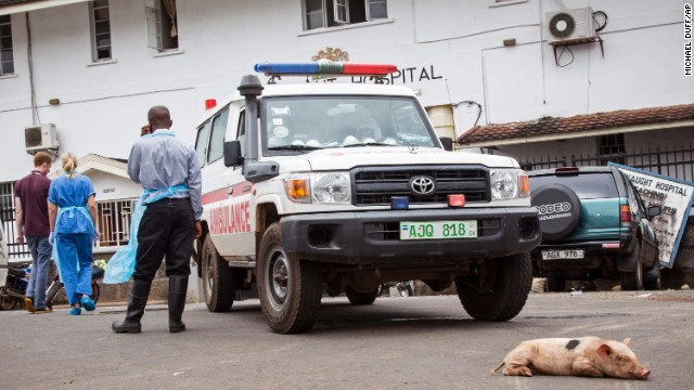 A baby pig sleeps in front of an ambulance at the Connaught Hospital in Freetown on September 21.