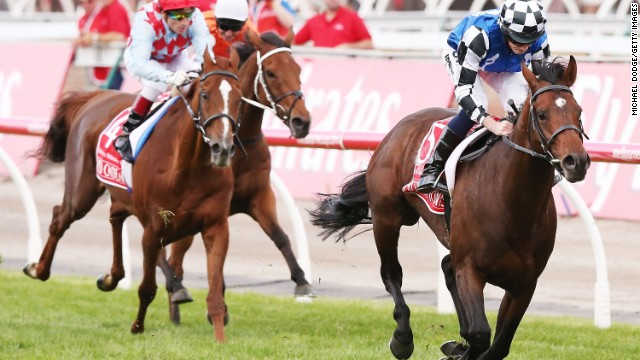 In the blue shirt and checkered cap, English jockey Ryan Moore pushes Protectionist ahead of the pack in Australia's Melbourne Cup, which is known as