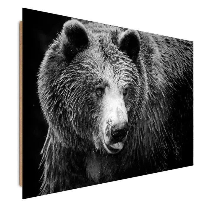 tableau toile tableau deco panel mural imprime 40x50 animal ours