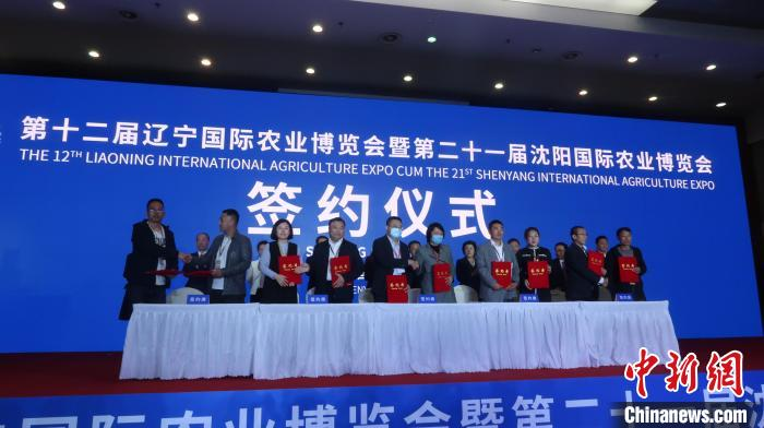 dd3a36c7 64aa 4672 9403 e37c58636834 zsite - The signing amount at the opening of Liaoning Shenyang International Agricultural Expo exceeded 20 billion yuan