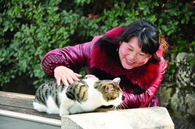 游客看到貓瞇,開心地與貓嬉戲。