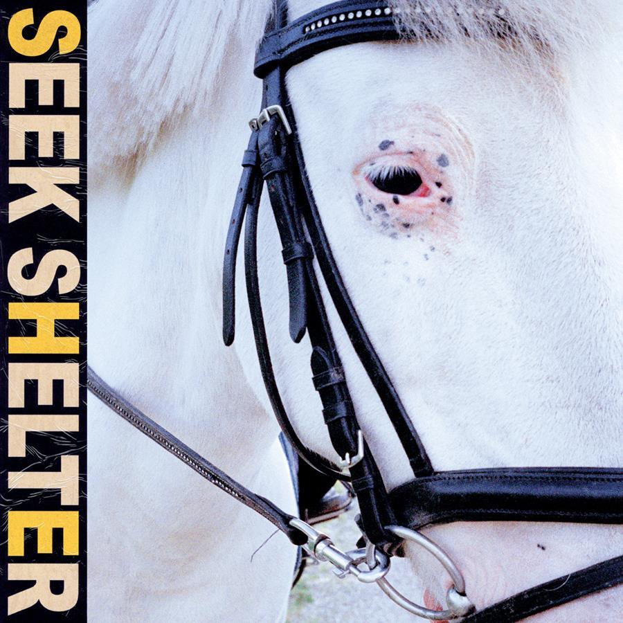 Seek Shelter Album art by Fryd Frydendahl