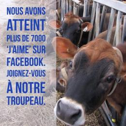 Jersey Canada Facebook
