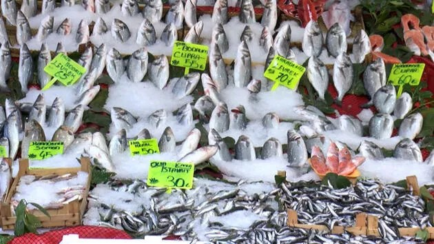 Bu balıkları tüketirken dikkat! Solunum durmasına kadar götürebilir