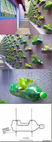 Image result for making useful things from plastic bottles
