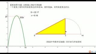 马学斌微视频113 人教版9上第21页第3题