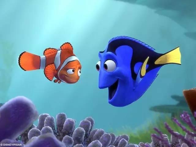 金魚的記憶真的只有七秒?金魚:我呸! - 每日頭條