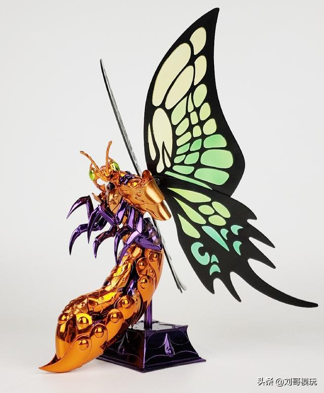 超漂亮的大蝴蝶!居然花了我800元才買到! - 每日頭條