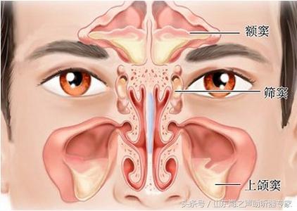 鼻息肉術後復發了怎麼辦 - 每日頭條