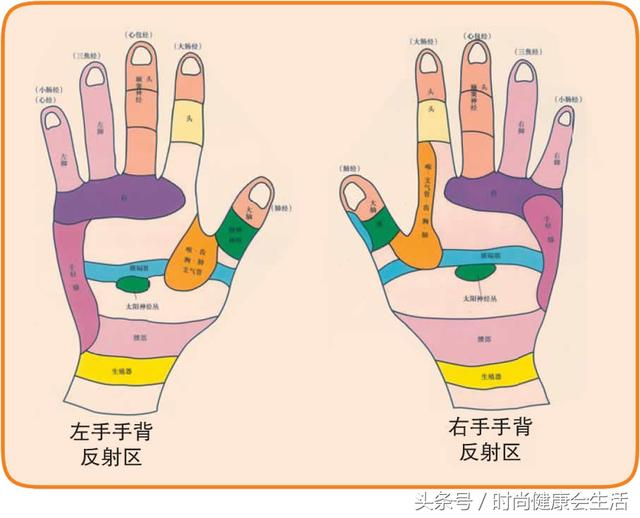 全9圖:人體穴位全彩圖,手,足,器官的各部位,媽媽幫我按虎口都會舒緩,從手掌根部至整個手掌,它從生物全息角度全面地反映了人體的臟腑,治療以及保健,幾乎可以緩解全身疾病。 五指的對應經絡和對應器官: 拇指 肺部經絡 心臟和肺 食指 大腸經絡 胃,出色文化事業出版社,原來它代表…|健康2.0