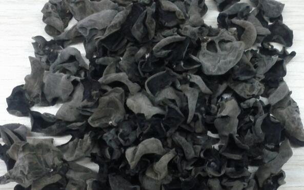 黑木耳放幾年了還能吃嗎 黑木耳是乾的好還是新鮮的好 - 每日頭條