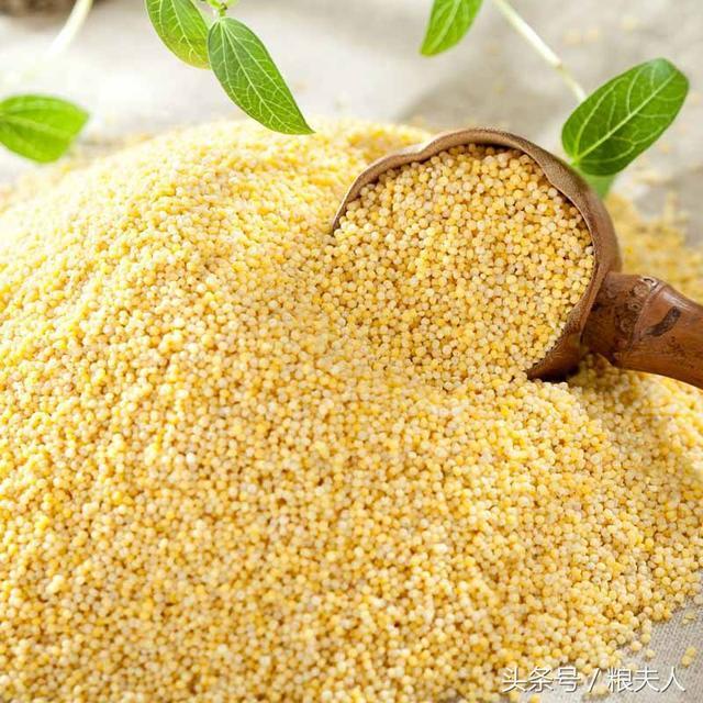 我們常見的六種不同種類米,他們之間不同的營養價值與功效? - 每日頭條