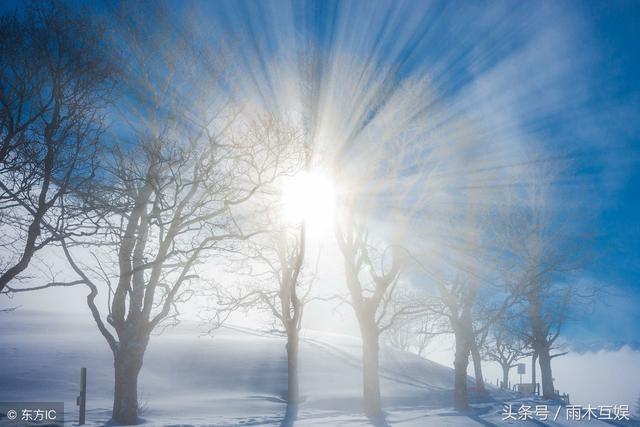 陽光光質的特點 - 每日頭條
