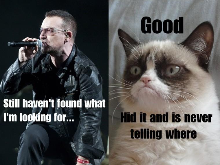 Grumpy Cat Meets Bono U2 Grumpy Cat Know Your Meme