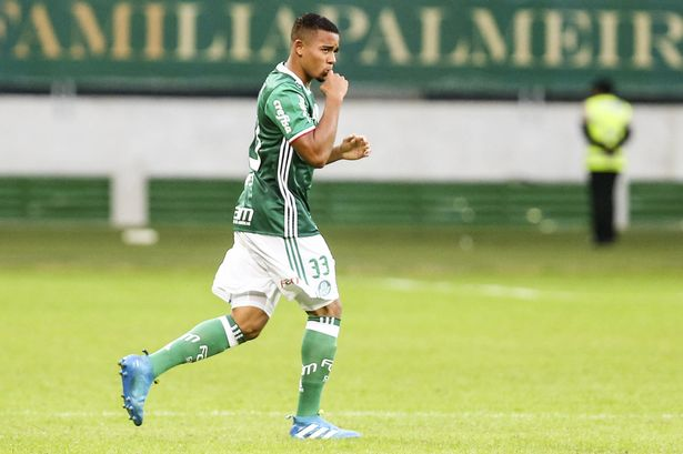 Gabriel Jesus of Palmeiras celebrates after scoring the second goal of his team during a match between Palmeiras and Atletico Paranaense as part of the Brasileirao 2016 at Allianz Park on May 14, 2016 in Sao Paulo, Brazil.
