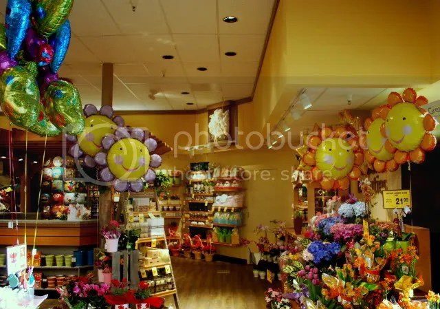 There Were Hundreds Of Balloons To Choose From Gawk At Or Ignore This Store Has Really Become A Mylar Wonderland And Im Sure Neighbors For Miles Around