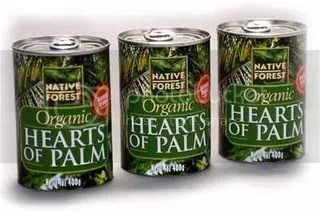 Native Forest Hearts of Palm