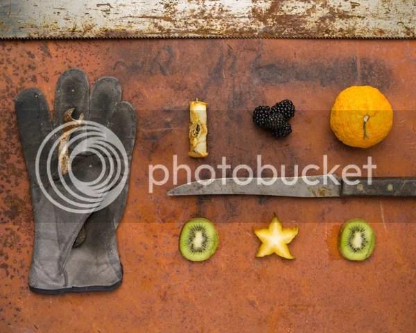 photo AlexisClements-FruitsofLabour3_zpsba9d6cd7.jpeg