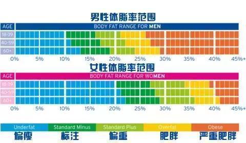 你的體脂率超過25%嗎?怎麼降低體脂? - 壹讀